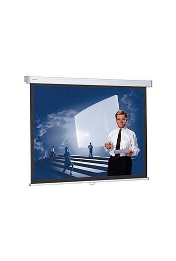 Projecta ProScreen CSR 139x240 см, MW, BD 53 см