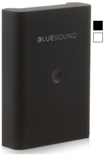 Bluesound BP100 Battery Pack