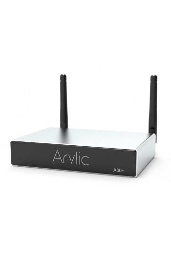 Arylic A30+